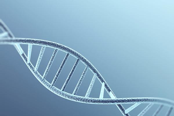 遺伝イメージ