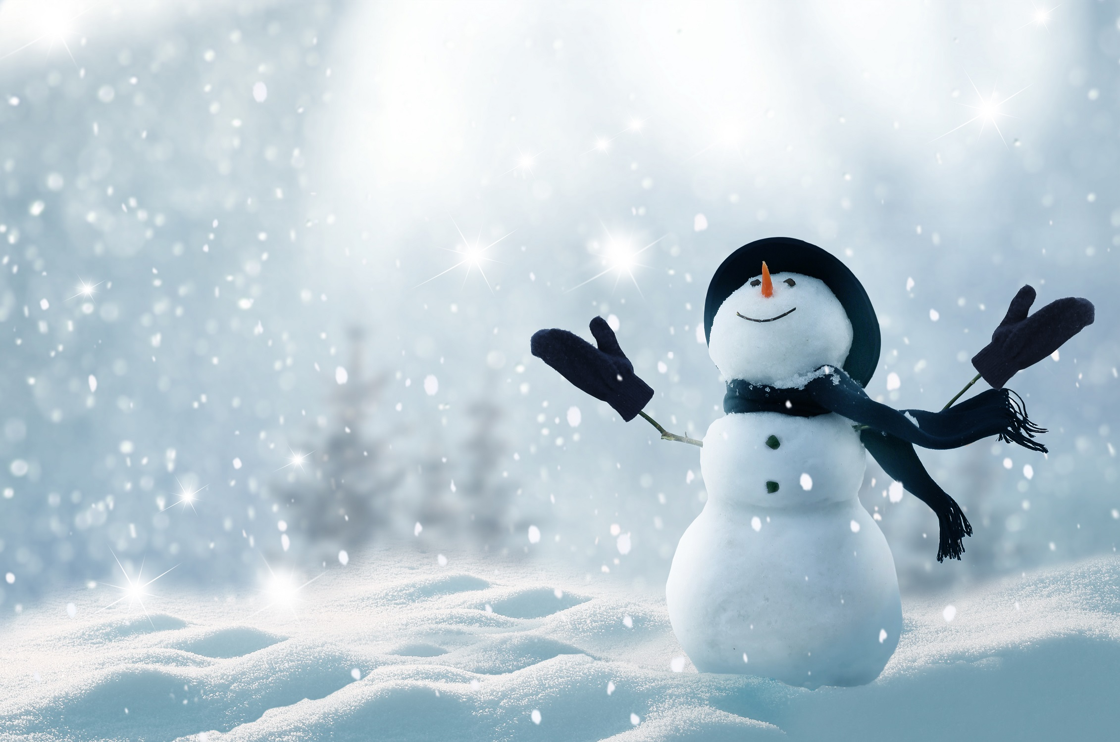 ちょっとくらいの雪や雨なら、傘はささない! その油断が女性の薄毛に?!